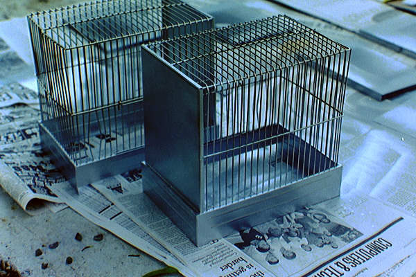 [ Painting Cages ]